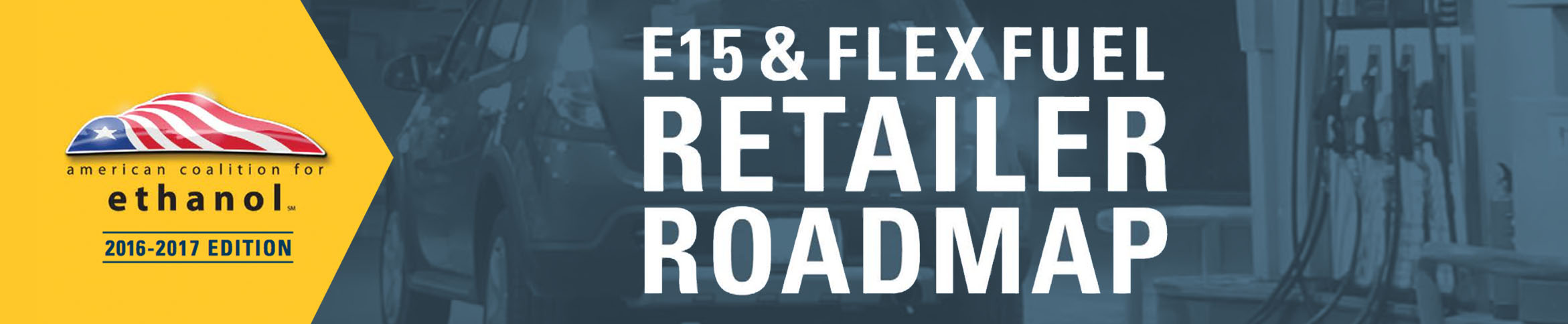 Flex Fuel Retailers Roadmap